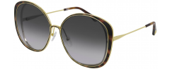 CHLOE CH0036S/001 - Sunglasses Online