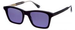 GIGI STUDIOS KUBRICK/6533-1 - Sunglasses Online